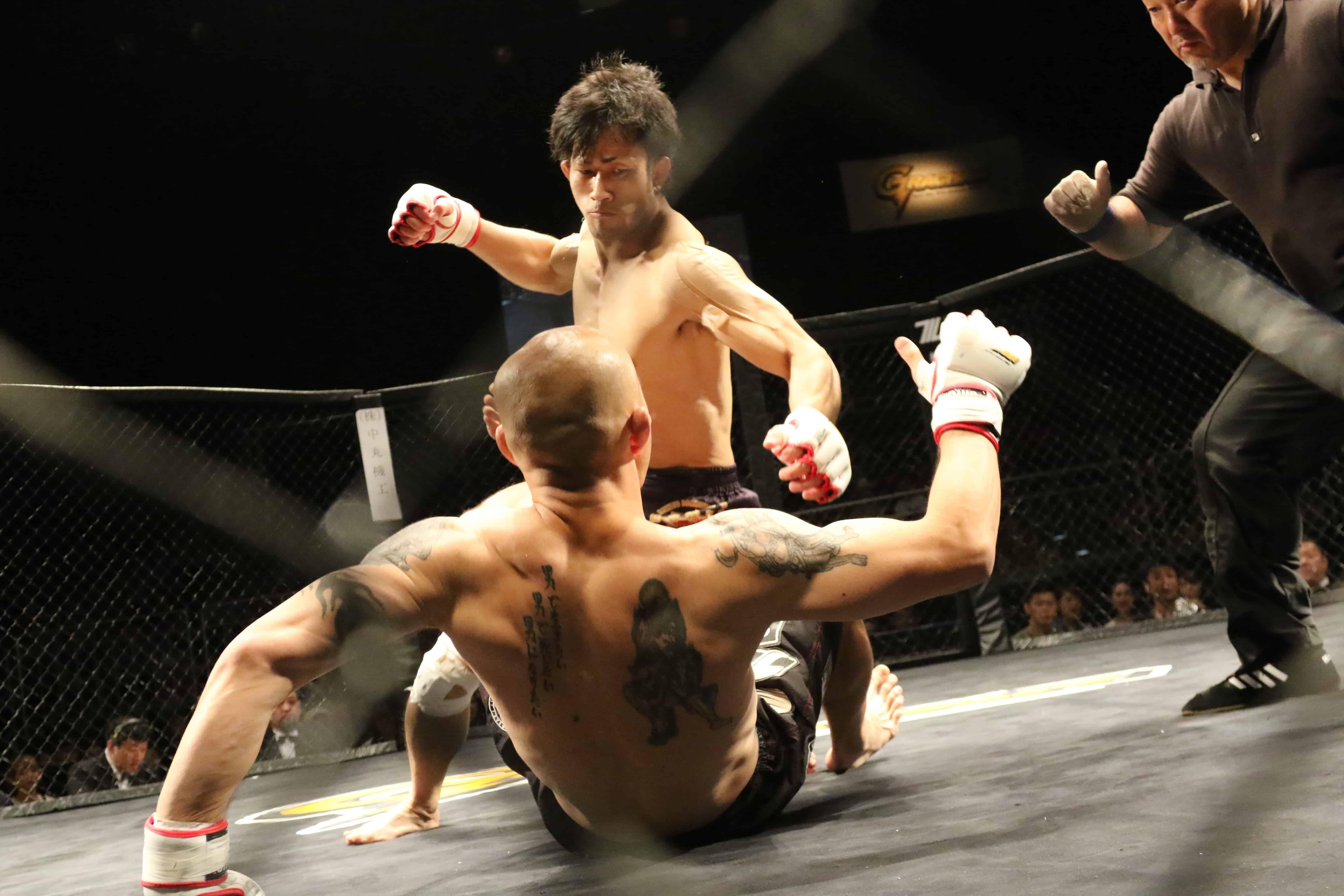 boksen sport