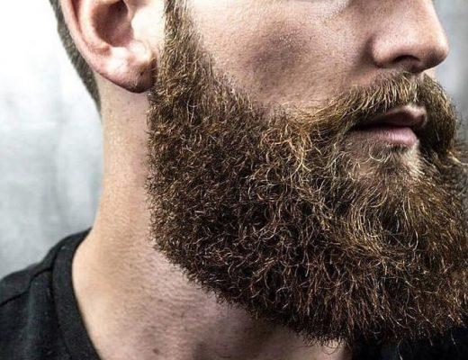 volle baard